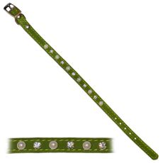 Obojok pre psa s ozdobami, zelený - 1,2x28-33,5cm