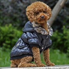 Bunda pre psa s čiernym lemovaním - čierna, XS
