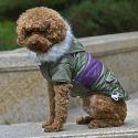 Bunda pre psa s nášivkou - zelená, XS
