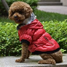 Bunda pre psa s čiernym lemovaním - červená, XS