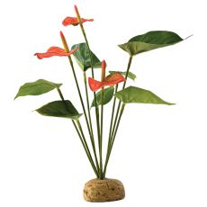 Exo Terra rastlina do terária - Anthurium bush, 30cm