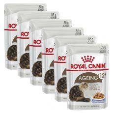 Royal Canin Ageing +12 Jelly kapsička pre staré mačky v želé 6 x 85g