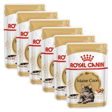 Royal Canin Maine Coon - kapsička, 6 x 85g