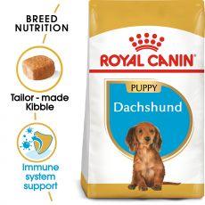 ROYAL CANIN Dachshund Puppy granule pre šteňa jazvečíka 1,5 kg