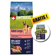 ONTARIO Adult Large Beef & Rice 12 kg + 2,25 kg GRATIS