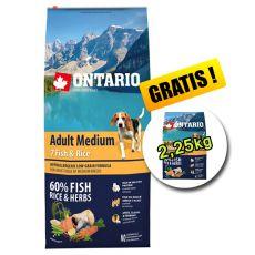 ONTARIO Adult Medium 7 Fish & Rice 12kg + 2,25kg GRATIS