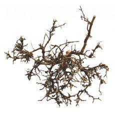 Dekorácia do terária - prírodný púštny ker 25 - 40m
