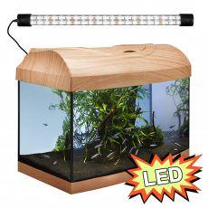 Akvárium STARTUP 40 LED Expert 6W - OBLÚK - BUK