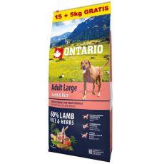 ONTARIO Adult Large - lamb & rice 15+5kg ZDARMA