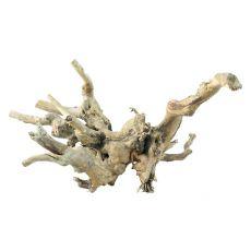Koreň do akvária Old Twity Wood - 28,5 x 26 x 13 cm