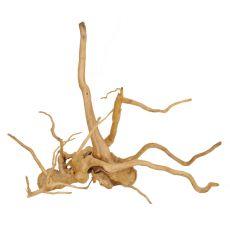 Koreň do akvária Cuckoo Root - 48 x 20 x 45 cm