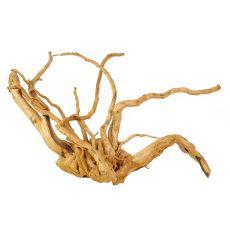 Koreň do akvária Cuckoo Root - 50 x 27 x 30 cm