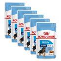Royal Canin Maxi Puppy kapsička pre veľké šteňatá 6 x 140 g