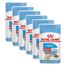 Royal Canin Medium Puppy kapsička pre stredné šteňatá 6 x 140 g