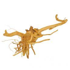 Koreň do akvária Cuckoo Root - 36 x 29 x 15 cm