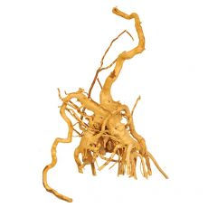 Koreň do akvária Cuckoo Root - 21 x 13 x 28 cm