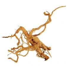 Koreň do akvária Cuckoo Root - 30 x 20 x 20 cm