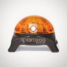 Svetlo na obojok SportDog Beacon, žlté