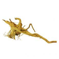 Koreň do akvária Cuckoo Root - 46 x 18 x 15 cm