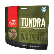 Pamlsky ORIJEN TREAT – Tundra 42,5 g