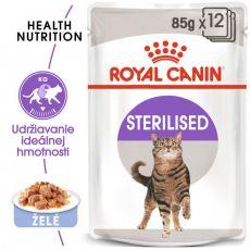 Royal Canin Sterilised Jelly kapsička pre kastrované mačky v želé 12 x 85 g