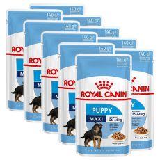 Royal Canin Maxi Puppy kapsička pre veľké šteňatá 10 x 140 g