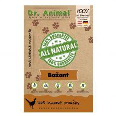 Dr.Animal 100 % bažantie mäsové prúžky 80 g