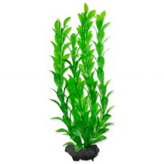 TETRA Rastlina Hygrophila M 23 cm