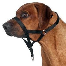 Postroj pre psov tréningový - M, 27 cm