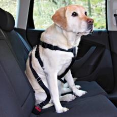 Postroj pre psa do auta, bezpečnostný - L, 70 - 90 cm
