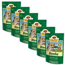 Wildcat Etosha kapsička 6 x 100 g