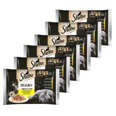 Sheba Delicacy Hydinový výber kapsičiek 6 x (4 x 85 g)