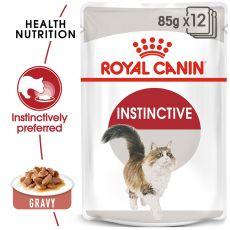 Royal Canin Instinctive Gravy kapsička pre mačky v šťave 12 x 85 g