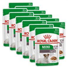 Royal Canin Mini Ageing kapsička pre staré malé psy 12 x 85 g