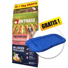 ONTARIO Puppy & Junior Large - chicken & potatoes 15+5kg ZDARMA+ DARČEK