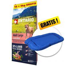 ONTARIO Adult Large - lamb & rice 15+5kg ZDARMA+ DARČEK