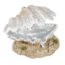 Ozdoba biela mušľa s perlou