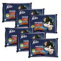 Kapsičky FELIX Fantastic s hovädzím a kuraťom v želé 6 x (4 x 85 g)