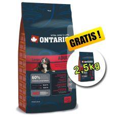 Ontario Adult Large 13 kg + 2,5 kg GRATIS
