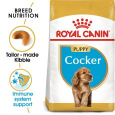 ROYAL CANIN Cocker Puppy granule pre šteňa kokeršpaniela 3 kg
