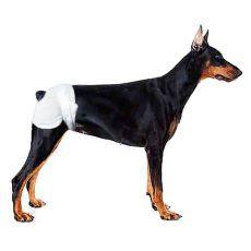 Plienky pre psov - 12 ks, veľkosť M - L