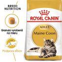 ROYAL CANIN Maine Coon Adult granule pre mainské mývalie mačky 10 kg
