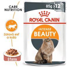 Royal Canin Intense Beauty Gravy kapsička pre mačky v šťave 12 x 85 g